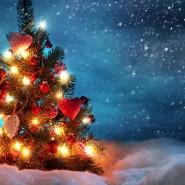 Друзья, поздравляем Вас с наступающим Новым годом и Рождеством!