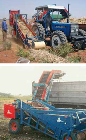Подборщик лука из валка и погрузчик в контейнеры СЛ 300 Аза Лифт (SL ASA-LIFT)